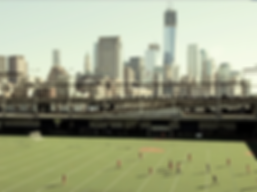 Going Pro American Soccer Movie