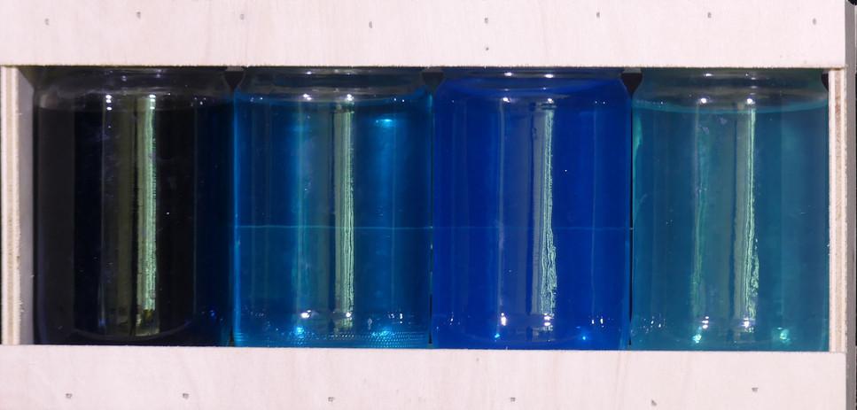 BANCS DE POISSON, encre acrylique, dispositif optique -  École du marais, Le Perrier, CE1/CE2