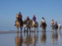 CavalOceane-balade-a-cheval-MichelARNAUD