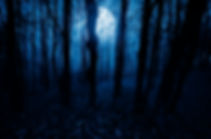 moonlight landscape in horror halloween
