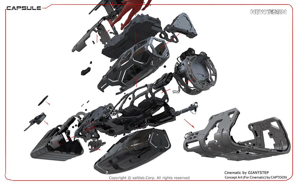 capsule-06.jpg