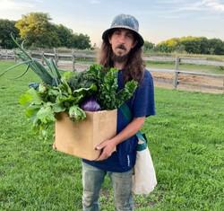 Organically grown CSA boxes