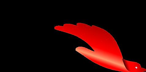 oiseau rouge.fw.png