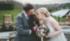 Bride and Groom with pet dog