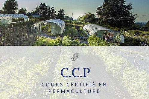 Cours certifié en Permaculture
