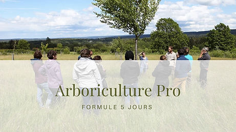 Arboriculture pro.jpg