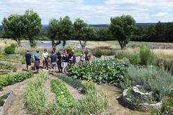 formation_jardinage
