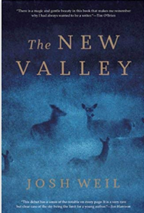 The New Valley