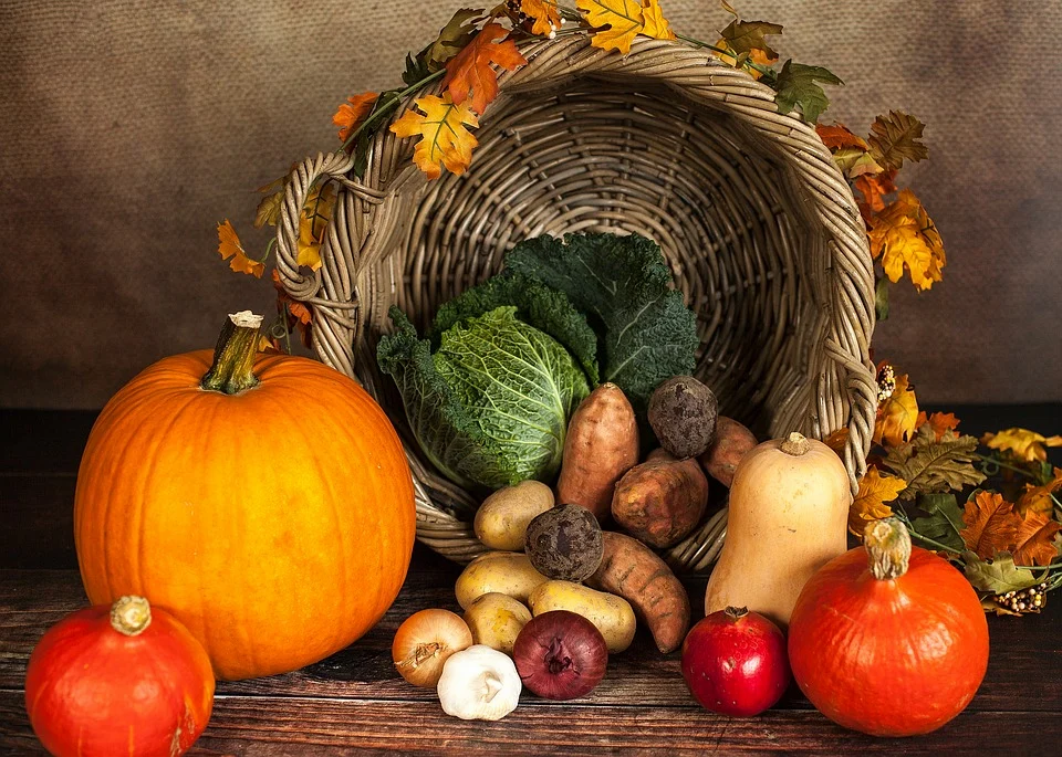 pumpkins and basket