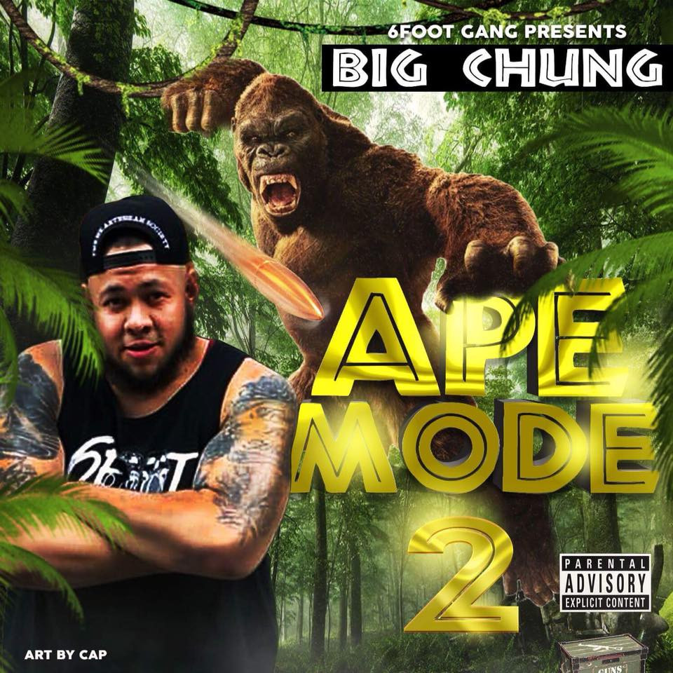 Big Chung, Ape Mode 2, 6 Foot Gang, DJ Damage, Hip Hop Everything