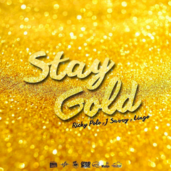 [New Video Alert] STAY GOLD - @DaRealRickyPolo x @JSavvy x @WiseGuyLingo