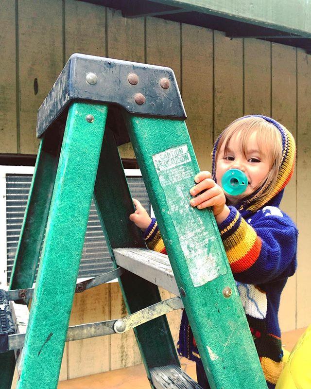 Zoe being a toddler boss on a ladder.