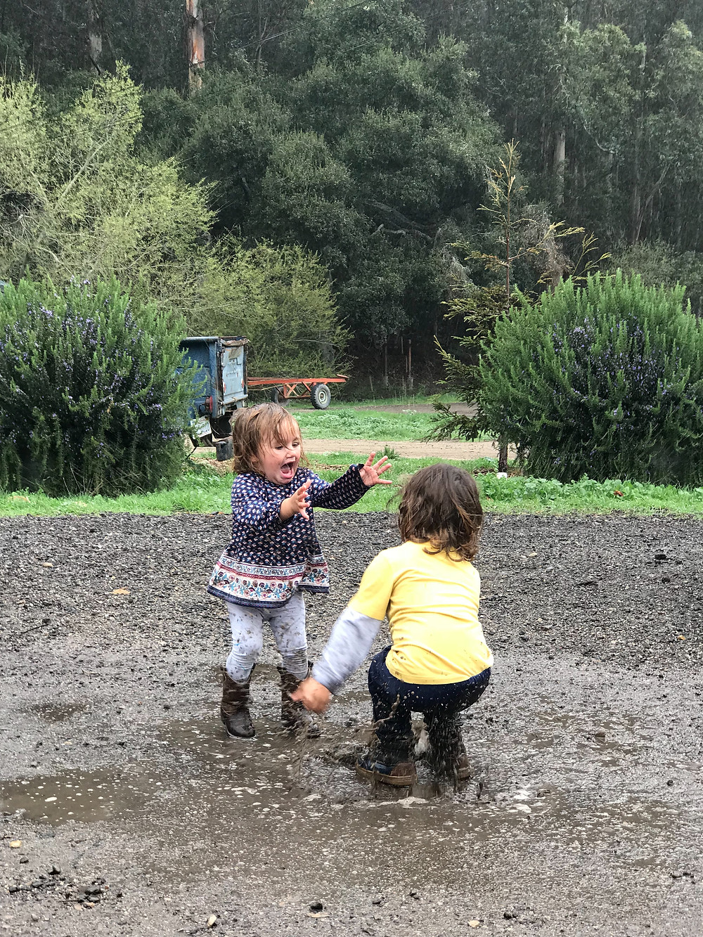 Wyatt & Zoe jumping in muddy puddles