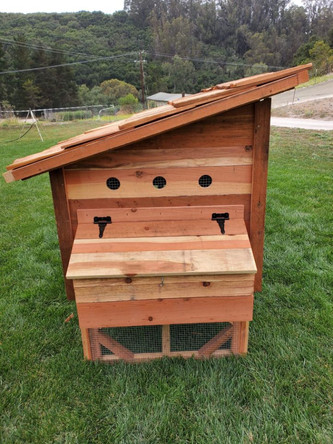 Nestign Box for Raised Durango