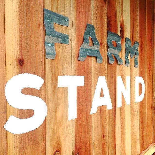 Rustic Dare 2 Dream Farm Stand sing