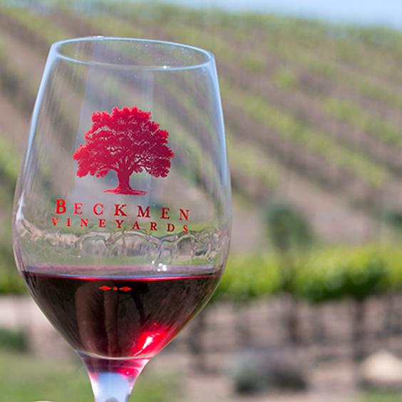 Beckmen Vineyards Wine Tasting