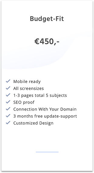 Website design - Budget-fit package