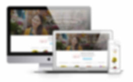 Cheap wesite design with responsive design