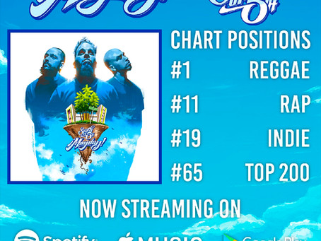 NUMBER ONE REGGAE ALBUM IN THE COUNTRY!!! THANK YOU!