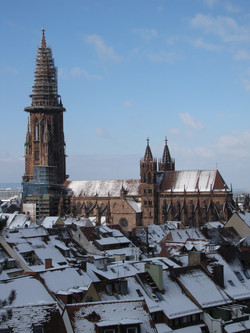 Freiburger Münster 01