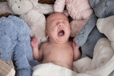Baby_Newborn-examples004.jpg