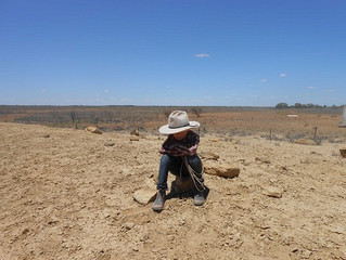 Qld drought relief