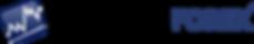 Logo Esteso FFX.png