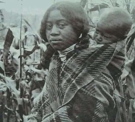 Original Cherokee of the Carolinas