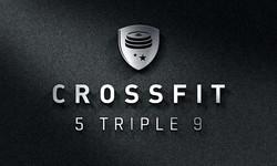 Crossfit5999 logo