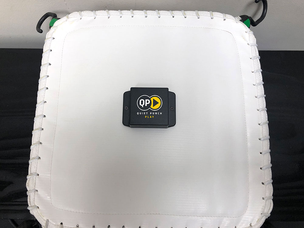 Mic-QPP-back-of-bag