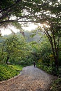 Paradise in paradise