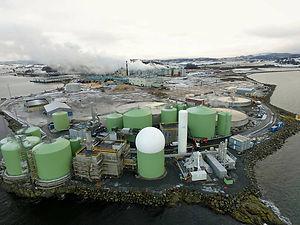 Biokraft 02.jpg