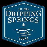 DSV Logo.Blue.png