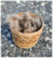 Basket of Qiviut