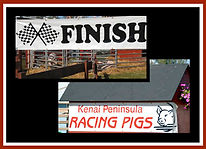 racing pigs finish line