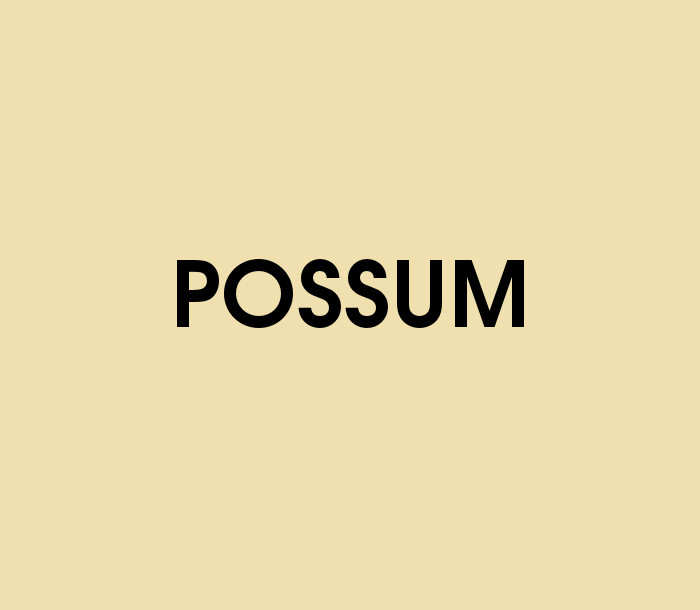 Possum Quiz