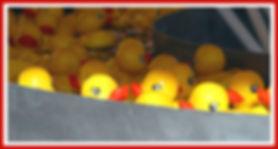 Rubber duck amusement park game
