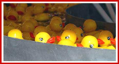Rubber duck amusement park game