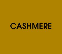Cashmere Quiz