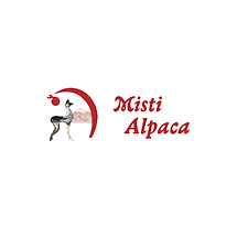 misti_alpaca.png