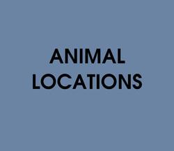 Animal Locations Quiz