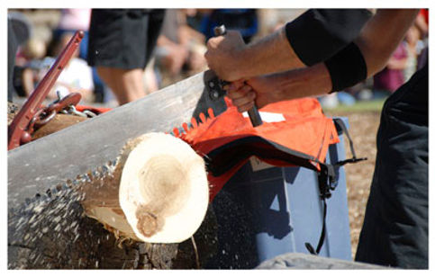 sawing log