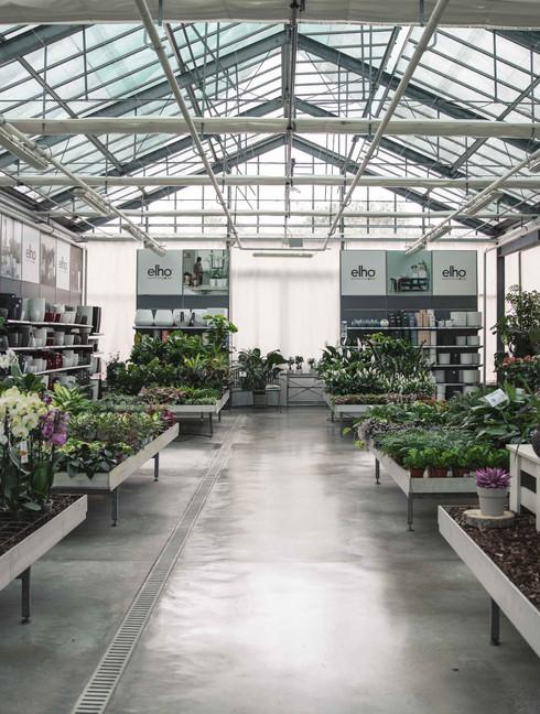 DonnaFlora garden