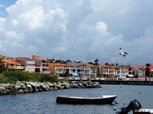 Puerto Rico – Palmas del Mar!