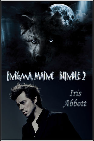 Enigma Bundle 2 copy.jpg