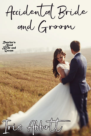 Updated Accidental Bride and Groom Cover