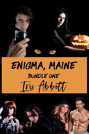Enigma Bundle One copy.jpg