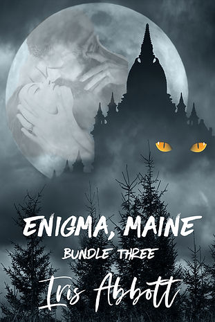 Enigma Maine Bundle 3 2018 copy.jpg