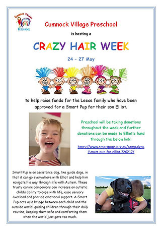 Crazy Hair Week Fundraiser-page-001.jpg