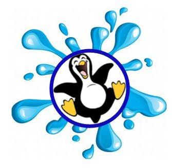 Leap penguin (2020_11_13 11_41_35 UTC).J